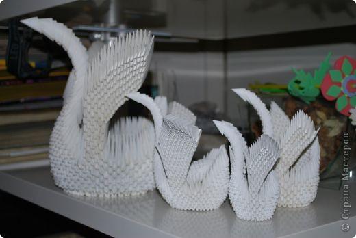 Мини-лебедь фото 3
