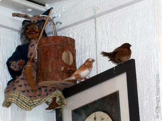 Уже знакомые Вам волнистые попугайчики http://stranamasterov.ru/node/170567 и те воробьинообразные, с кем Вы сейчас познакомитесь, живут на  этой веранде совершенно свободными.  Воробей мой, воробьишка!  Серый, юркий, словно мышка.  Глазки — бисер, лапки — врозь,  Лапки — боком, лапки — вкось...  Прыгай, прыгай, я не трону —  Видишь, хлебца накрошил...  Двинь-ка клювом в бок ворону,  Кто ее сюда просил?  Прыгни ближе, ну-ка, ну-ка,  Так, вот так, еще чуть-чуть...  Ветер сыплет снегом, злюка,  И на спинку, и на грудь.  Подружись со мной, пичужка,  Будем вместе в доме жить,  Сядем рядышком под вьюшкой,  Будем азбуку учить...  Ближе, ну еще немножко...  Фурх! Удрал... Какой нахал!  Съел все зерна, съел все крошки  И спасиба не сказал.  (1921) Саша Чёрный  фото 16