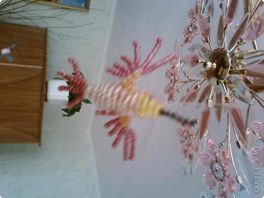 сакура для папика) фото 22