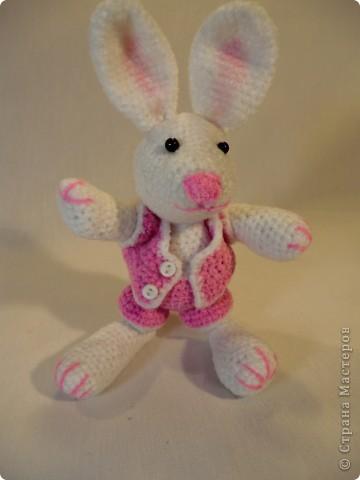кролик связался еще накануне Нового года к году Кролика фото 1