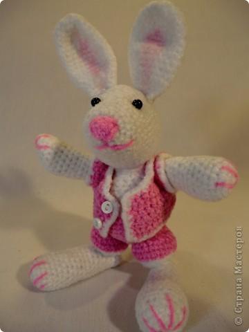 кролик связался еще накануне Нового года к году Кролика фото 3