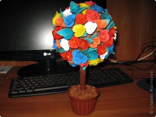 мое фарфоровое дерево