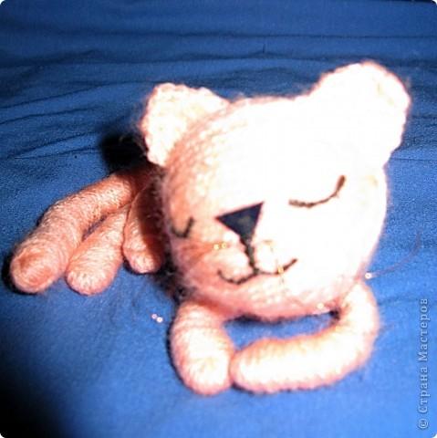 Кот фото 2