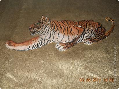 Тигр фото 1