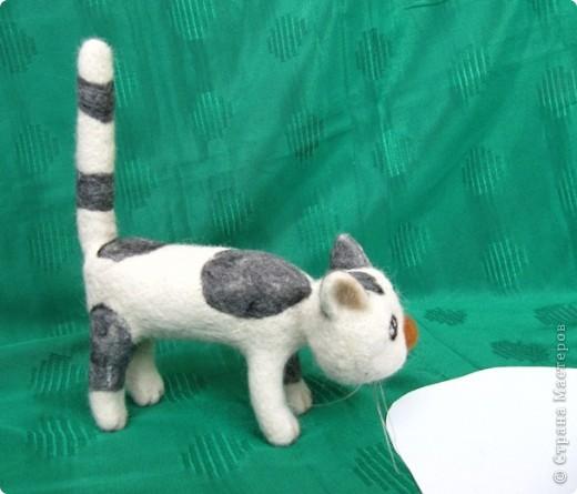 Жила-была... кошка...:-) фото 4