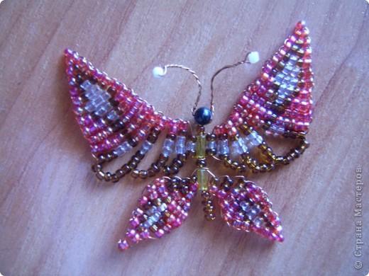 На этой бабочке я с дочерью училась бисероплетению по книге Ликсо Н. Л. БИСЕР. фото 1