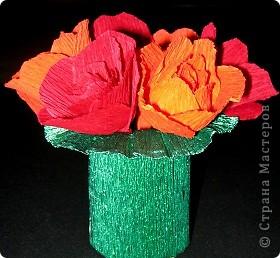 Алые розы фото 5