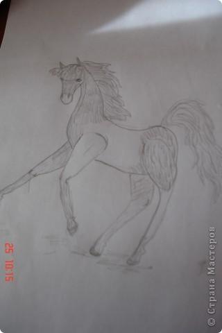 Это Слейпнир,восьминогий конь верховного бога викингов Одина. фото 2