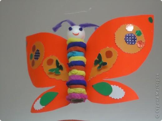 Бабочки летают,бабочки... фото 4