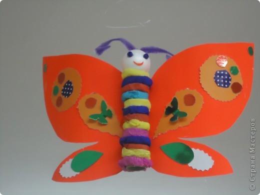 Бабочки летают,бабочки... фото 1