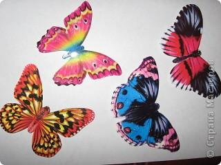 Вот такую бабочку мы смастерили с дочкой. фото 4