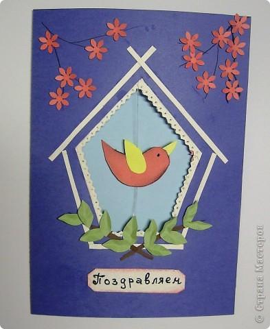 2 апреля. Международный день птиц. фото 3