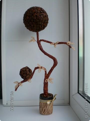 Все любовалась кофейными деревцами, и вот наконец решила себе сделать, но вот бисер добавить идея не моя. Большая благодарность прекрасной девушке Татьяне 88 за такую отличную идею совместить бисер и кофе в одном деревце.   фото 1