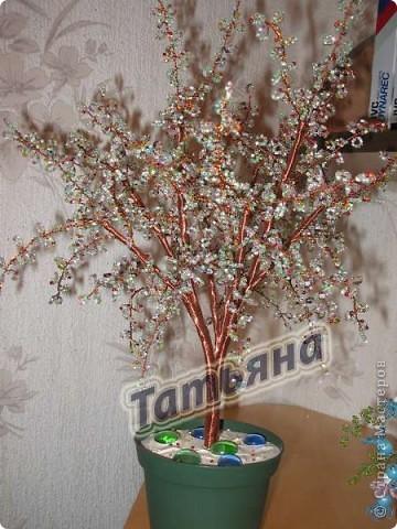 Дерево желаний. фото 3