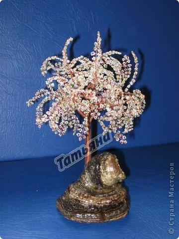 Дерево желаний. фото 1