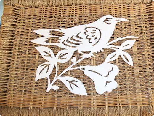 1 апреля-Всемирный День защиты птиц фото 8