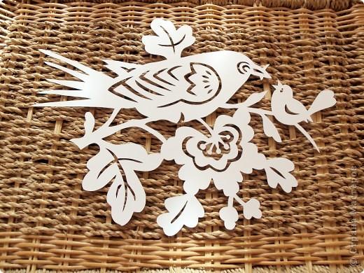 1 апреля-Всемирный День защиты птиц фото 11