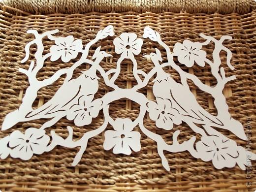 1 апреля-Всемирный День защиты птиц фото 6