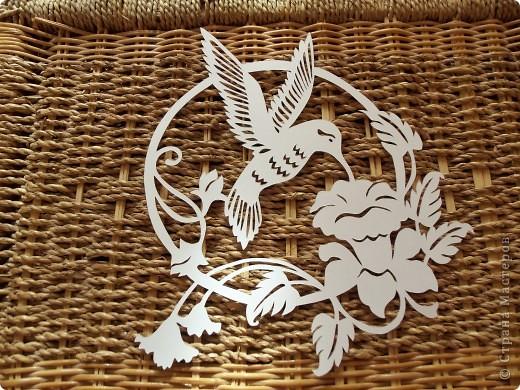 1 апреля-Всемирный День защиты птиц фото 17