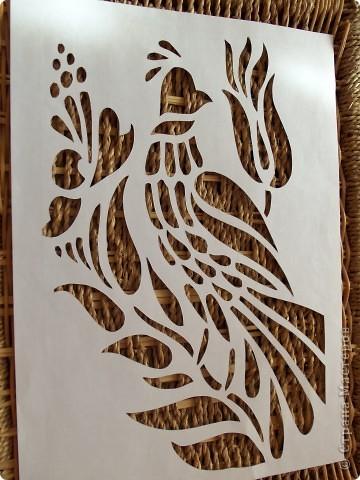 1 апреля-Всемирный День защиты птиц фото 3
