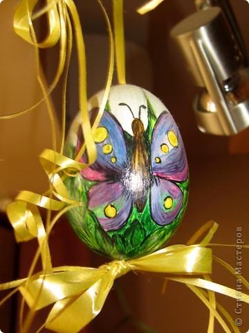 Пасхальние яйца фото 2