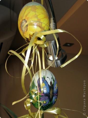 Пасхальние яйца фото 3