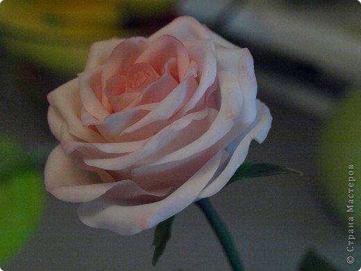 Вот такое было розовое настроене) Роза слеплена из холодного фарфора (самоварного) фото 1