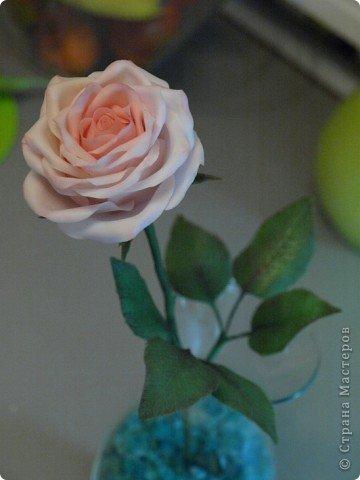 Вот такое было розовое настроене) Роза слеплена из холодного фарфора (самоварного) фото 3