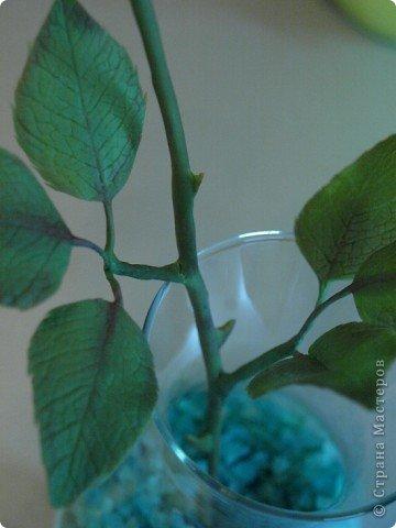 Вот такое было розовое настроене) Роза слеплена из холодного фарфора (самоварного) фото 4