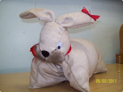 Настя Кривосилова со своей игрушкой-подушкой кролик. После этой подушки она ещё трех таких сшила. Всем близким ей хотелось подарить и хоть одного себе оставить. фото 2