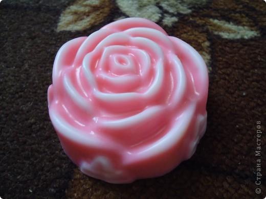 Бело-розовая роза) фото 5