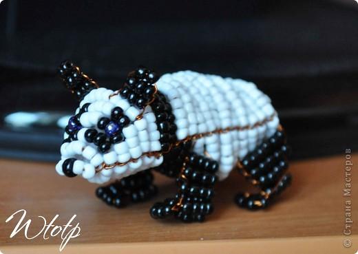 Панда и Мишка фото 1
