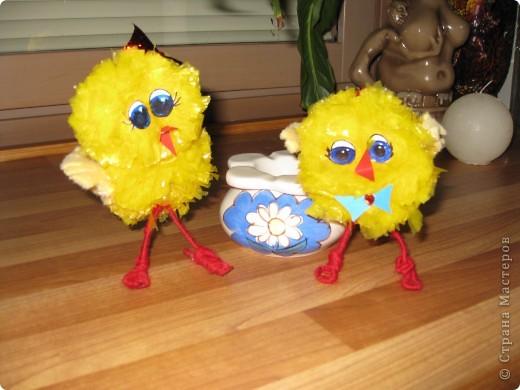 у нас сегодня прибавление в семействе-цыплята(не смогла пройти мимо желтеньких мусорных пакетиков) фото 1