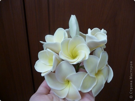 Плюмерию лепила по замечательному МК Валентины (ClayART) - http://stranamasterov.ru/node/144839 фото 2