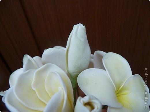 Плюмерию лепила по замечательному МК Валентины (ClayART) - http://stranamasterov.ru/node/144839 фото 3