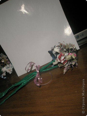 хризантемы фото 5