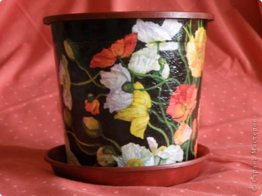 Вот и золота добавила, бортик покрасила, тарелочку тоже привела в порядок, в нем уже живет мой цветочек. фото 4