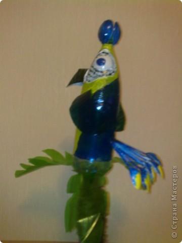 по просьбе свекрови родилась у меня такая птичка ей по экологии нужна была поделка из бросового материала фото 5