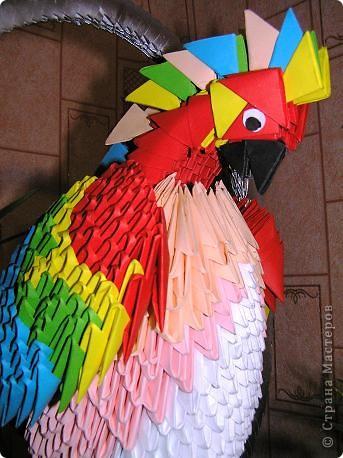 Петруша-птичка! фото 2