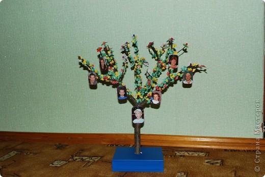 Генеалогическое дерево семьи своими руками фото