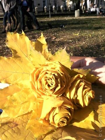 Нашла осенние фотки и решила их выложить. Пока дочка игралась на площадке руки как-то сами-собой скрутили цветочки. Я не думала что это так поразит мамочек на соседних лавочках, которые стали сходиться и разглядывать их. фото 3