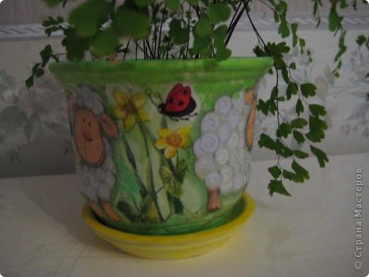 Вот такой цветочный горшоче живет у меня дома. фото 4