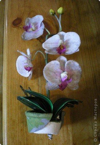 Вот такая орхидея у меня теперь цветёт. А главное, ни поливать, ни брызгать не надо! )))  фото 3