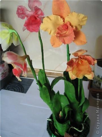 орхидеи по МК SVET1301 фото 1