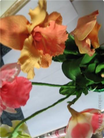 орхидеи по МК SVET1301 фото 2