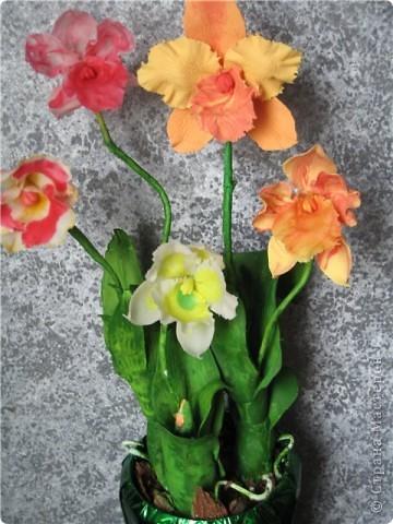 орхидеи по МК SVET1301 фото 4