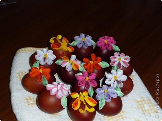 Яйца делала моя подруга фото 4