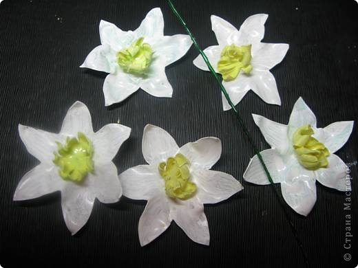 У меня в огороде ВЕСНА! Расцветают нарциссы на грядках. Если Вы подумали, что это на самом деле зацвели первые весенние цветы, то у меня ПОЛУЧИЛОСЬ!!! Сегодня утром у меня под окном расцвели нарциссы.А Вы хотите весны? Тогда давайте творить. фото 20