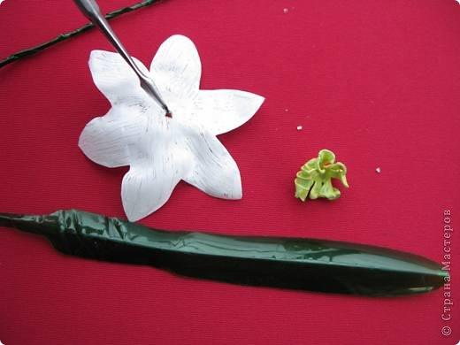 У меня в огороде ВЕСНА! Расцветают нарциссы на грядках. Если Вы подумали, что это на самом деле зацвели первые весенние цветы, то у меня ПОЛУЧИЛОСЬ!!! Сегодня утром у меня под окном расцвели нарциссы.А Вы хотите весны? Тогда давайте творить. фото 26