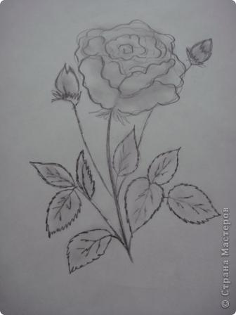 Маленький МК  разукрашивания моей розы. фото 2